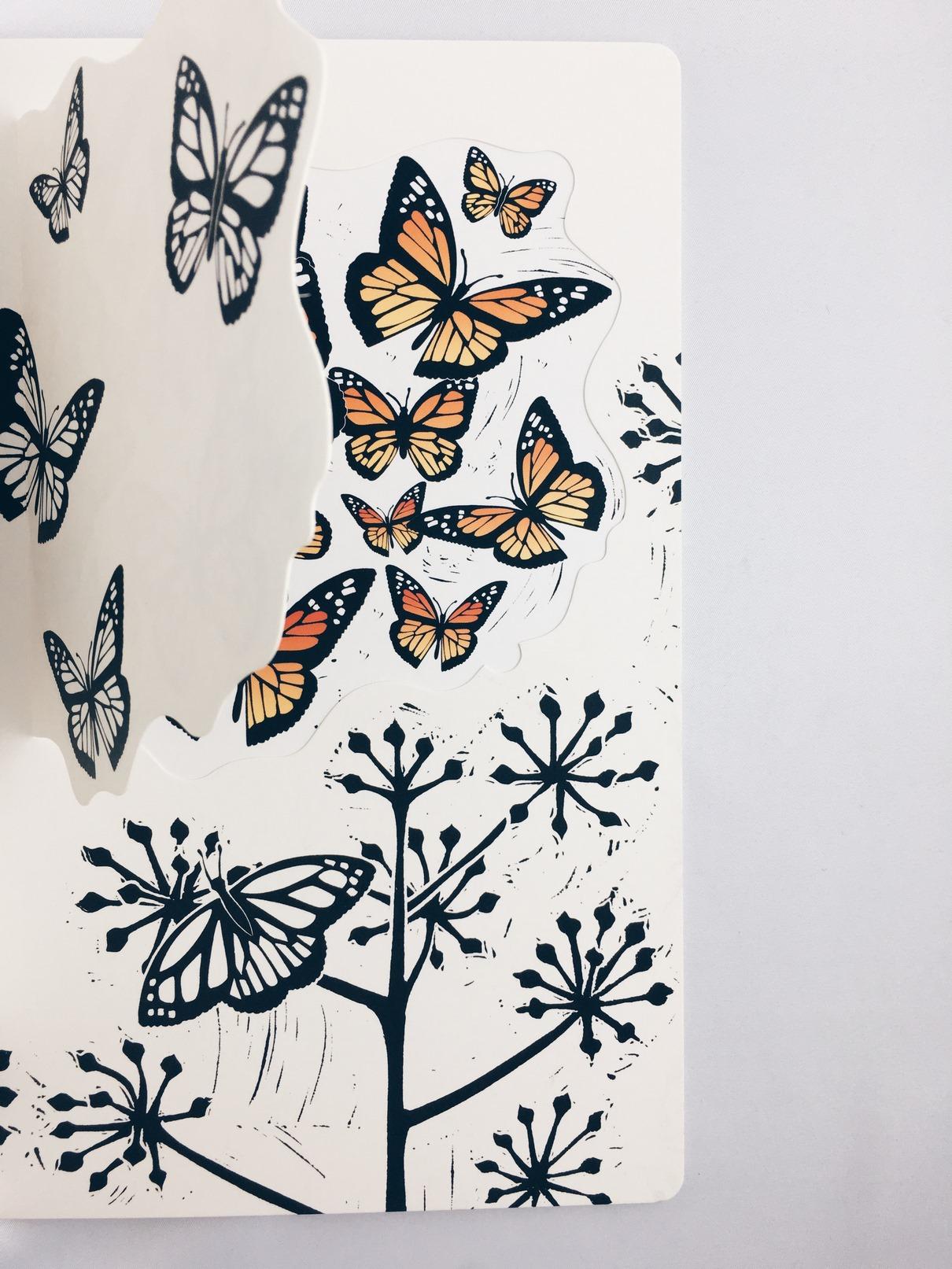 Ogród motyli
