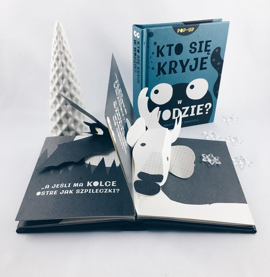 Książki na Mikołaja