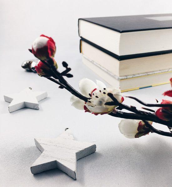 Rzeczy, które irytują mnie w książkach